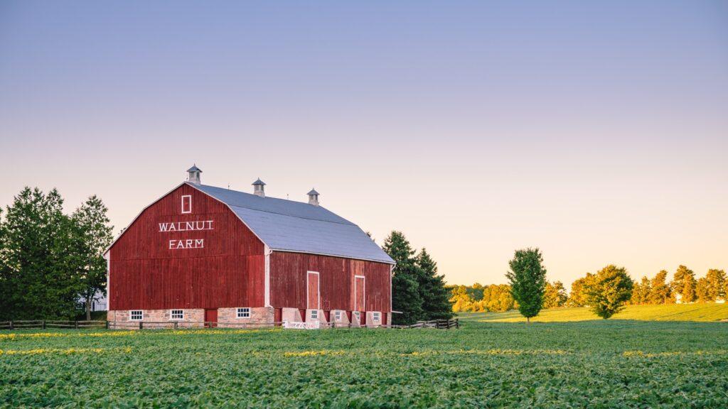 How to start a barn wedding venue